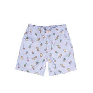 Summer Shorts- Cactus
