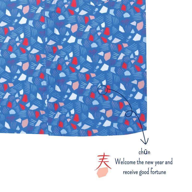 Boy's Mandarin Shirt - Spring Gems - Blue