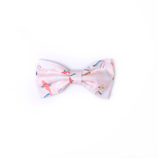 BowtifulJoy x Chubby Chubby Bows - Plentiful Koi - Coral